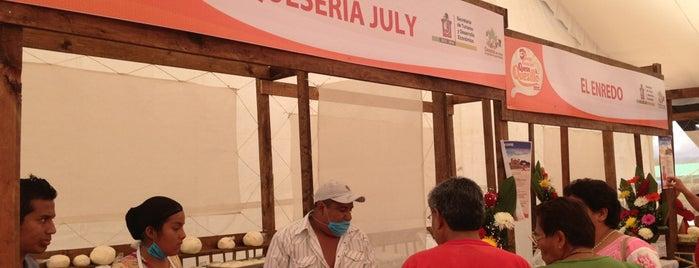 Feria del Quesillo is one of Orte, die Zazil gefallen.