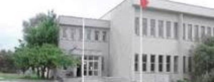 Gemi İnşaatı ve Deniz Bilimleri Fakültesi is one of Fakülteler ve Yüksekokullar.
