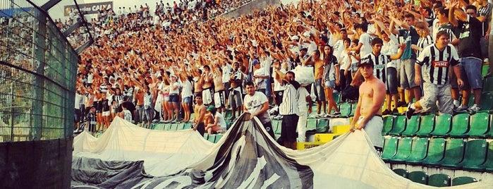 Estádio Orlando Scarpelli is one of Lugares favoritos de Micael Helias.