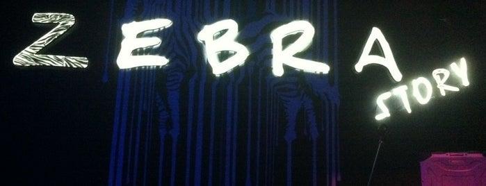 Zebra Story Club is one of Gespeicherte Orte von Olga.