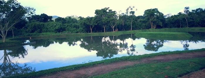 Dom Aquino is one of Mato Grosso.