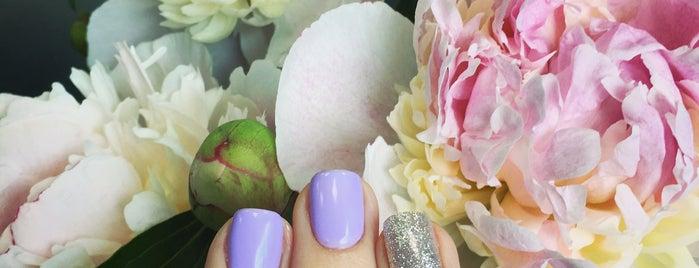 Blossom is one of Locais curtidos por Katya.