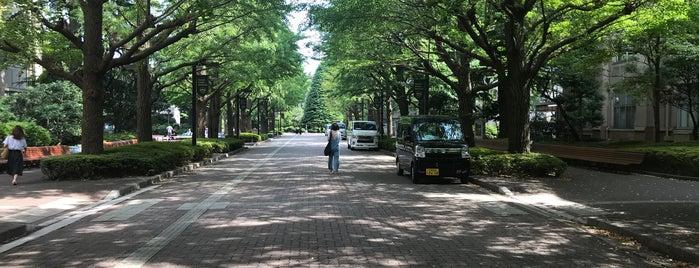 青山学院大学 2号館 is one of Aoyama Gakuin.
