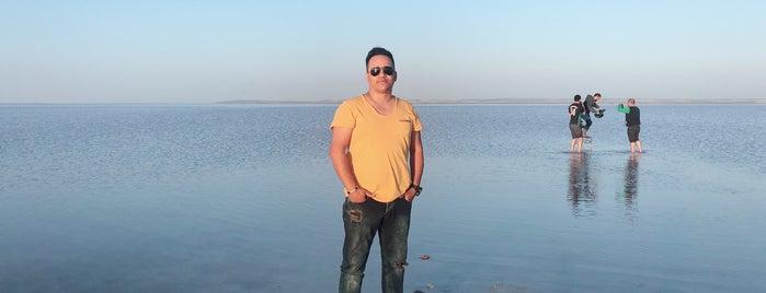 Prins Otogaz-Memduh Usta is one of สถานที่ที่ Alphan ถูกใจ.