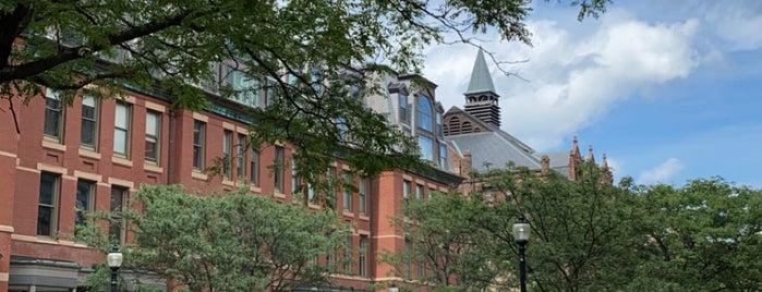Newbury St is one of Boston.