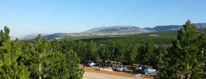 Kent Ormanı is one of Orte, die H@S@N gefallen.