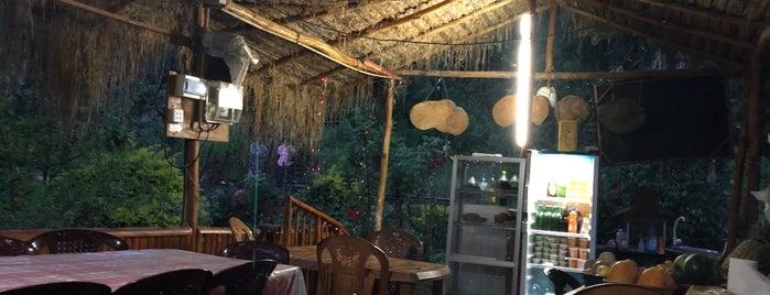 garden view restaurant is one of Sri Lanka.