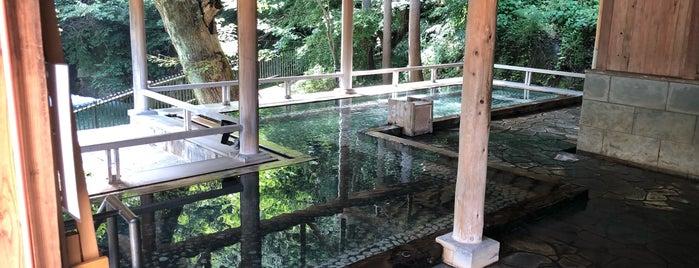 四万温泉 四万たむら is one of [To-do] Onsen.