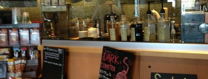 Starbucks is one of Haluk : понравившиеся места.