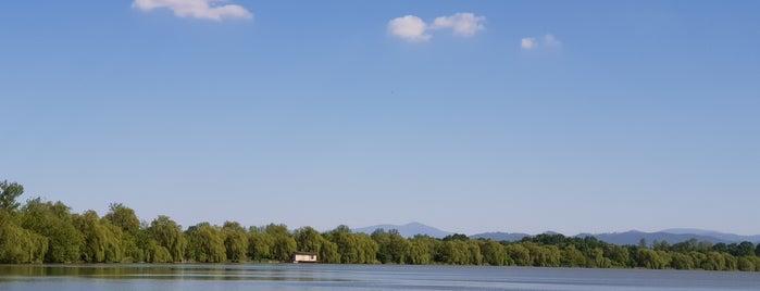 Jistebnické Rybníky is one of Lakes.