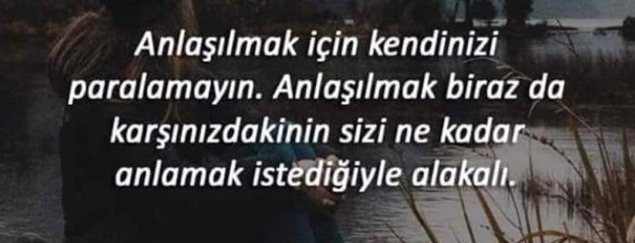 Yeşilçam Kuruyemiş Trt Şube is one of Yasemin Arzu'nun Kaydettiği Mekanlar.