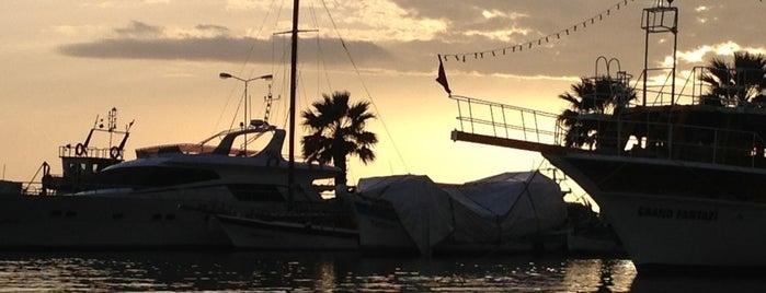 Gülbeyaz Balık Ekmek Teknesi is one of Lugares favoritos de Ceren.