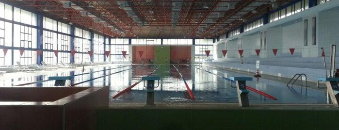 Çukurova Üniversitesi Özdemir Sabancı Yüzme Havuzu is one of my favorites.