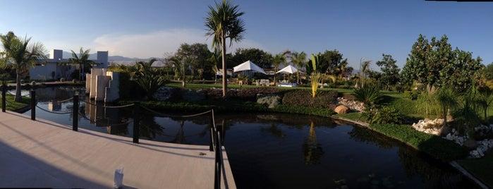 Jardín Vandu is one of Lieux qui ont plu à RedBite.