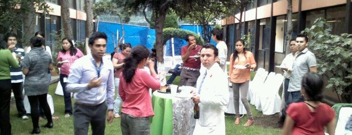 Unidad de Investigación Biomédica en Cáncer UNAM-INCan is one of Lugares favoritos de 叠戈 Adrian.