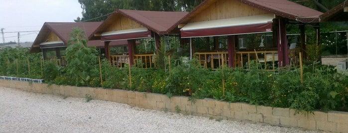 Çamaltı Et - Mangal is one of Lieux qui ont plu à Hakan.