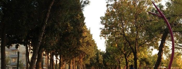 Cumhuriyet Parkı Koşu Parkuru is one of Lieux qui ont plu à Emre.
