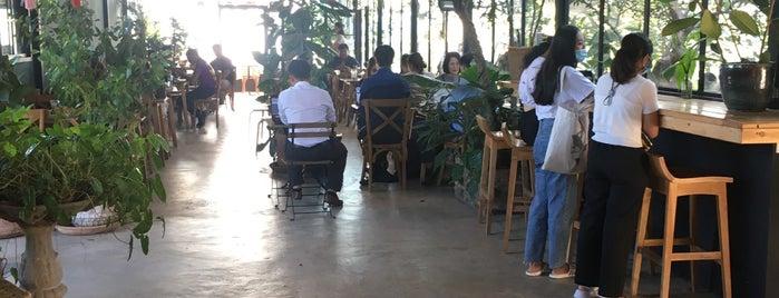 หมอก คาเฟ่ is one of 07_ตามรอย_coffee.