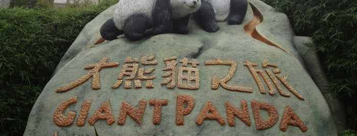 Giant Panda Adventure is one of Hong Kong.