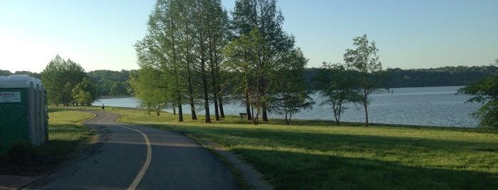 Creve Coeur Lake Running Trail is one of Mattさんのお気に入りスポット.