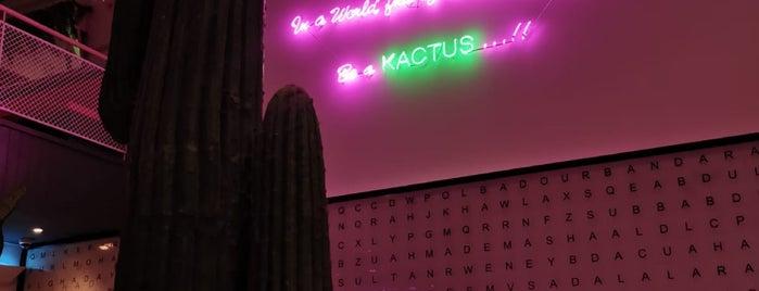 Kactus كاكتس is one of Amal'ın Kaydettiği Mekanlar.