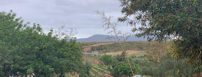 Sol Y Barro is one of Lugares favoritos de Beto.