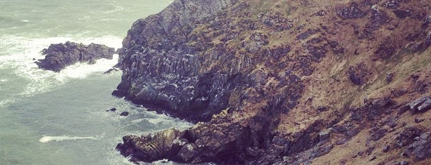 Howth Cliff Walk is one of Dublin/Galway.