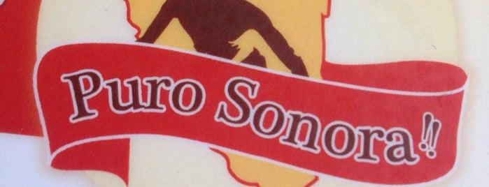 Puro Sonora is one of Por Conocer.