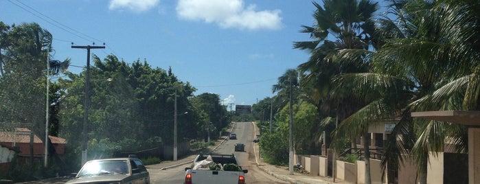 Mirante de Tibau do Sul is one of Posti che sono piaciuti a Alberto Luthianne.