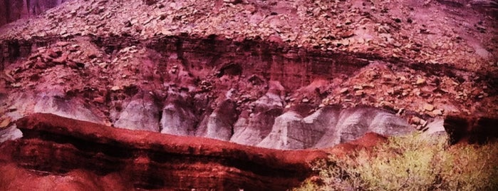 Capitol Reef National Park is one of USA Trip 2013.