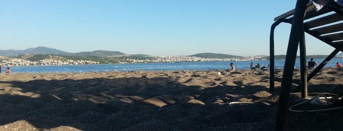 Aliağa Polis Plajı is one of Posti che sono piaciuti a Çağlar.