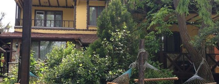El Rio Motel is one of Lugares guardados de M.Fuat.