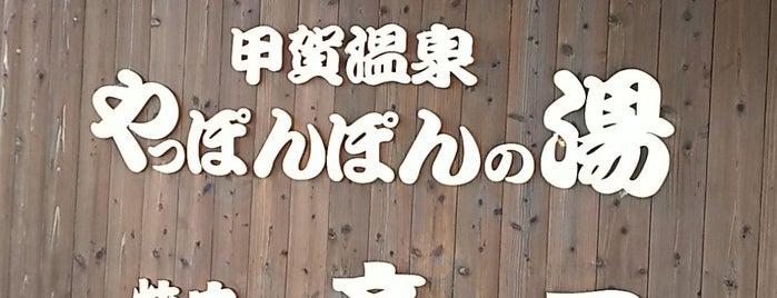 甲賀温泉 やっぽんぽんの湯 is one of 訪れた温泉施設.