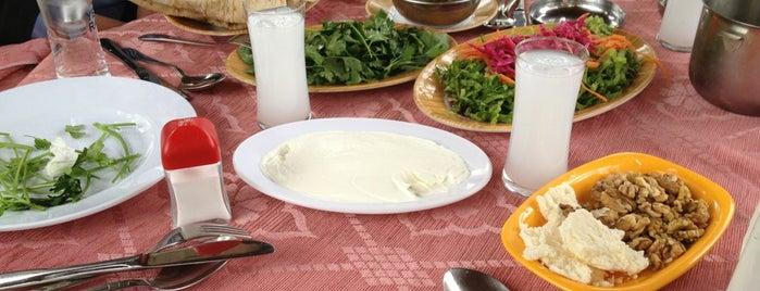 Değirmen Balık Restaurant is one of Aysun'un Kaydettiği Mekanlar.