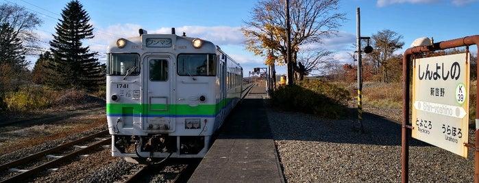 Shin-Yoshino Station is one of JR 홋카이도역 (JR 北海道地方の駅).
