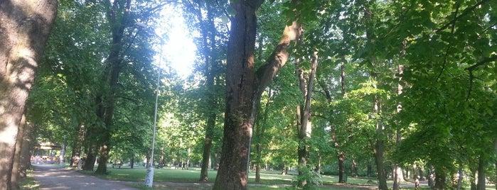 Mestský park (BB) is one of Locais curtidos por Martin.