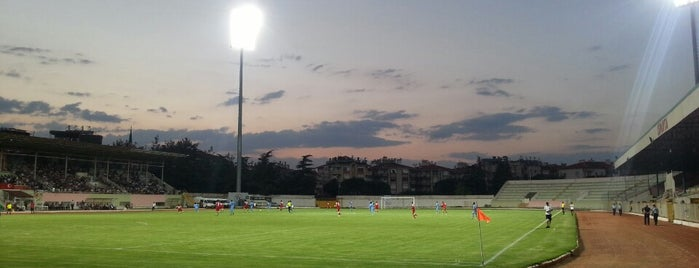 Atatürk Stadyumu is one of MeSuT : понравившиеся места.
