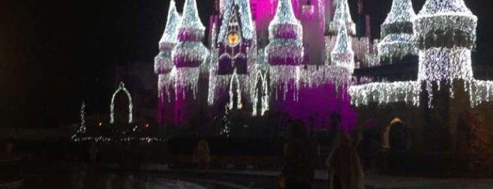 Magic Kingdom® Park is one of D 님이 좋아한 장소.