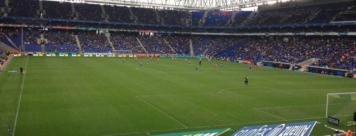 RCDE Stadium is one of La Liga BBVA Stadium 2013-14.