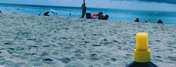 4th Street Beach is one of Orte, die Sara gefallen.