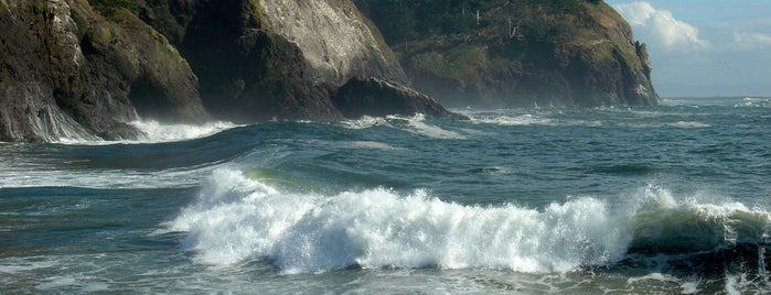 Cape Disappointment State Park is one of Amy & Craig Exploregon.