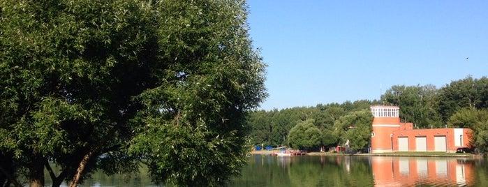 Мещерский пруд is one of Lieux qui ont plu à Annette.