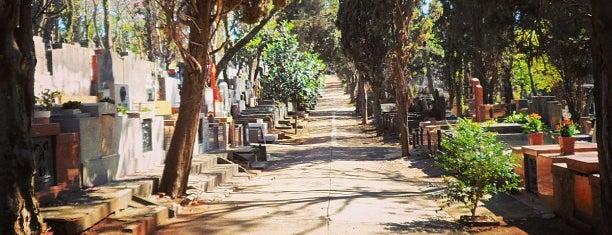 Cemitério do Araçá is one of Sao Paulo.