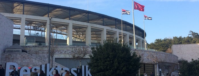 Vodafone Park is one of Şehr-i İstanbul.