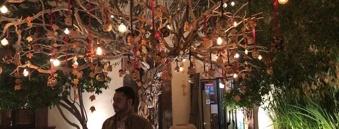 Atrio Restaurant & Lounge is one of SMA.