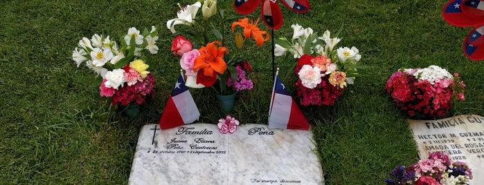 Cementerio Parque Los Pensamientos is one of สถานที่ที่ Paula ถูกใจ.