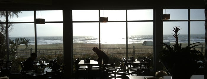 Surf Club Ocean Grille is one of Va Beach Restaurants.
