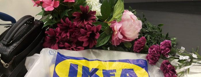 IKEA is one of Locais curtidos por Gysteriosa.