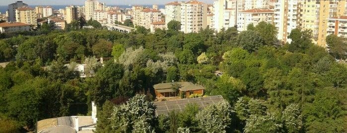 Mustafa Mazhar Bey Caddesi is one of Emrahさんの保存済みスポット.