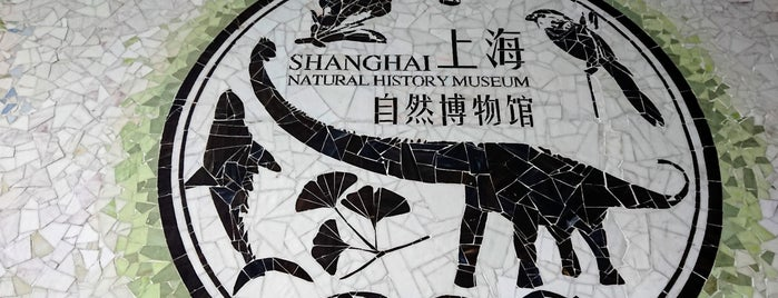 Shanghai Natural History Museum is one of Touring Shanghai.